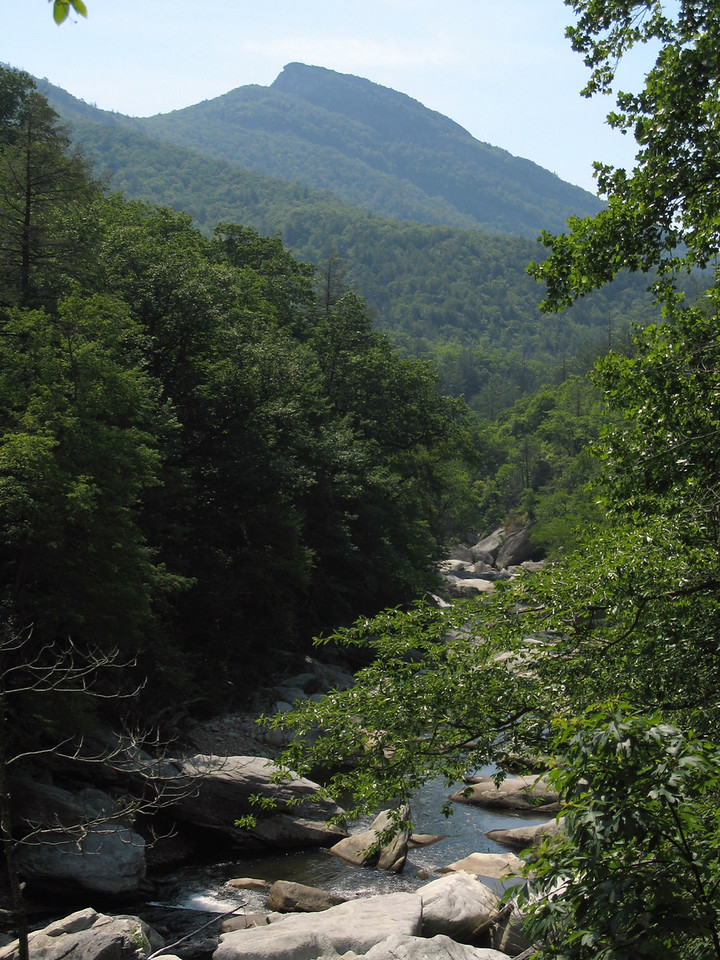 Hawksbill Mountain rises almost 2000' above the Linville River in this shot from the Linville Gorge Trail.