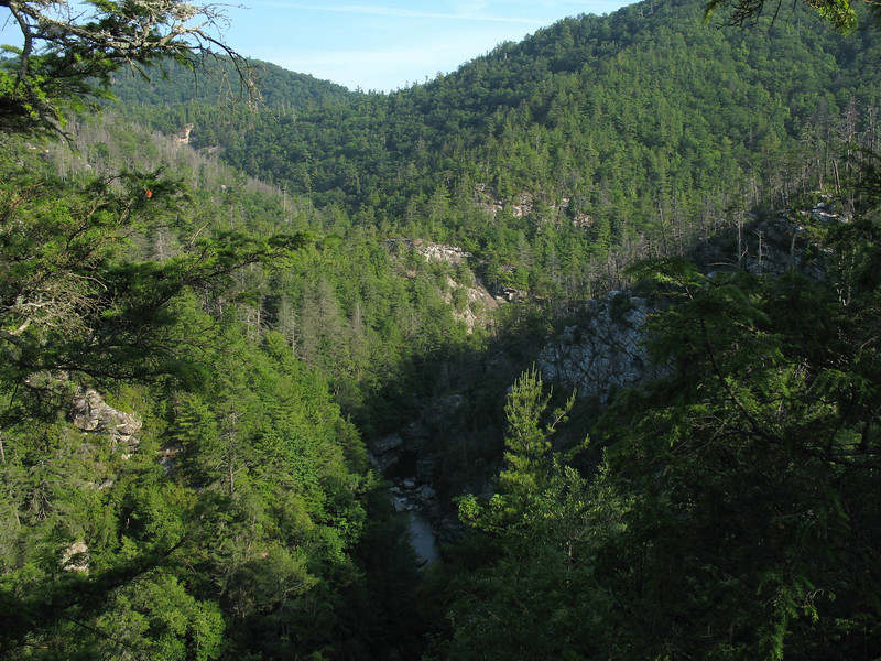 The Upper Gorge