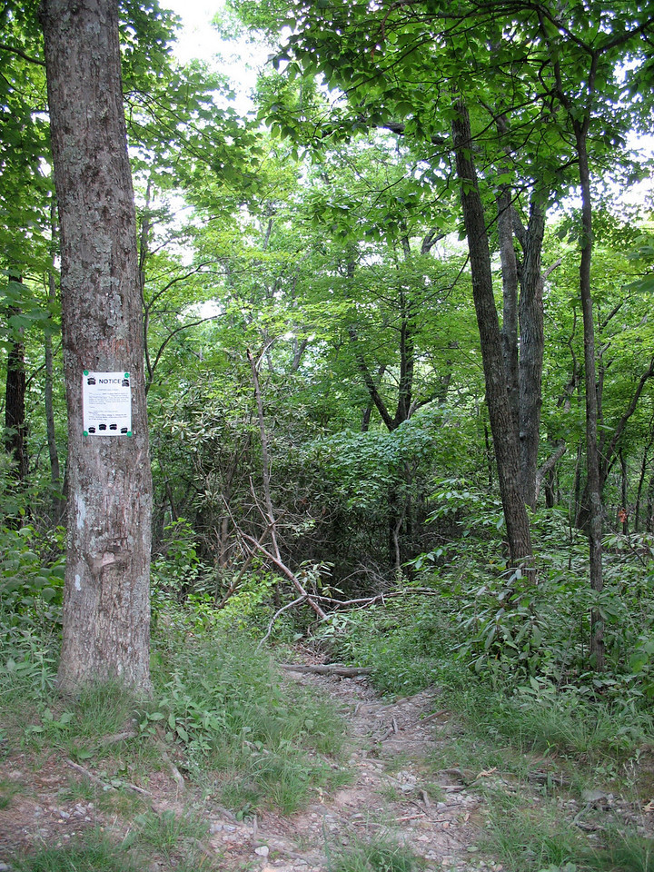 Sandy Flats Trailhead