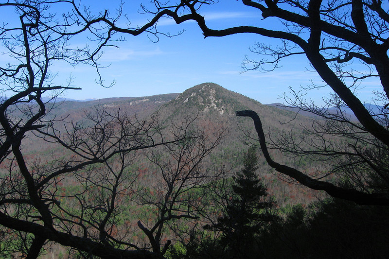 After gaining about 500' of elevation the trail started to circle beneath the summit of Tablerock and offered some limited views through the trees of neighboring Hawksbill Mountain (4,020')...