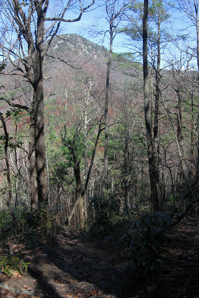 The steepness of the terrain provided some surprisingly decent views through the trees.  Here, Hawksbill rises above...