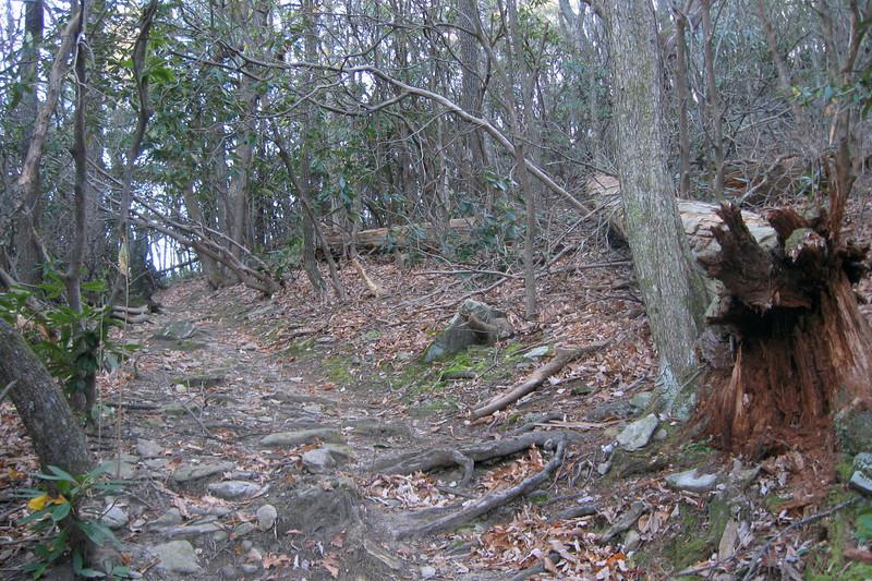 Table Rock Gap Trail (MST) -- 3,000'