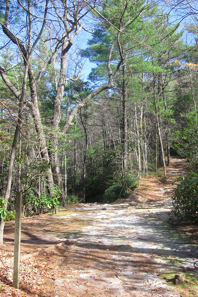The junction of the Spence Ridge and Little Tablerock Trails...I'd be continuing down, straight ahead...