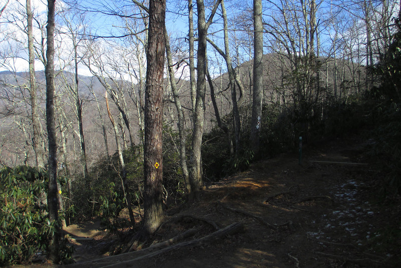 After a short while the Lookout Trail crosses the old Trestle Road which now serves as yet another path in the Montreat system...
