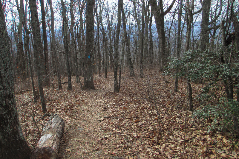 Hickory Ridge Trail