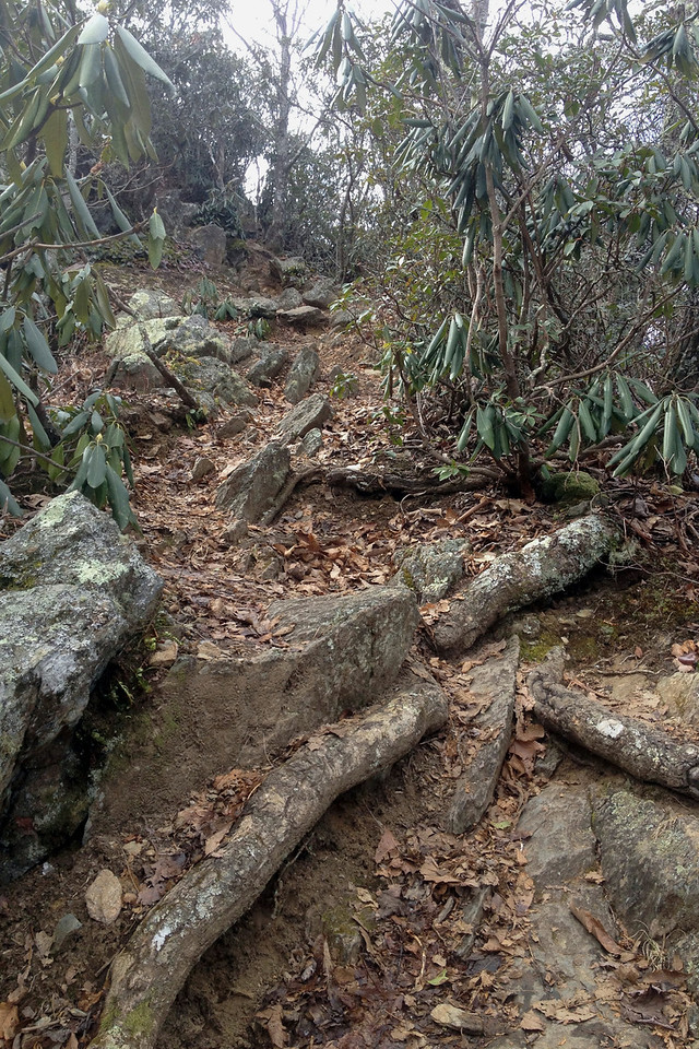 The climb from the saddle degenerates into a steep scramble capped off by a 10' rock ledge hurdle to the summit...