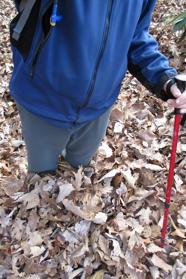 <i>Someone needs to rake the trail!!</i>