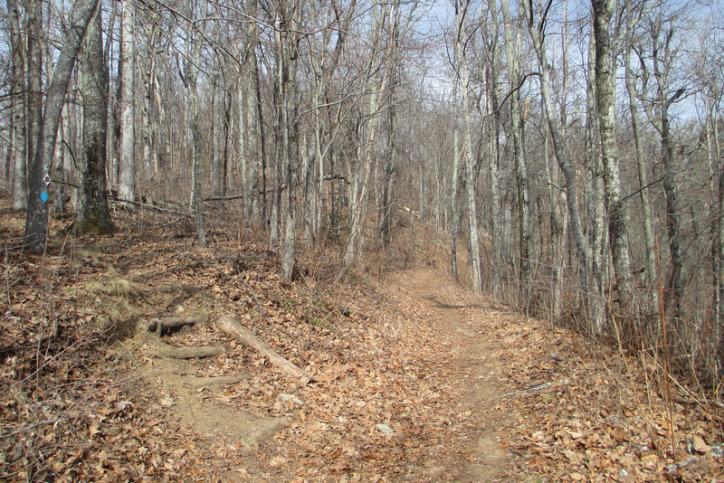 Hickory Ridge Trail-Old Mitchell Toll Road Junction
