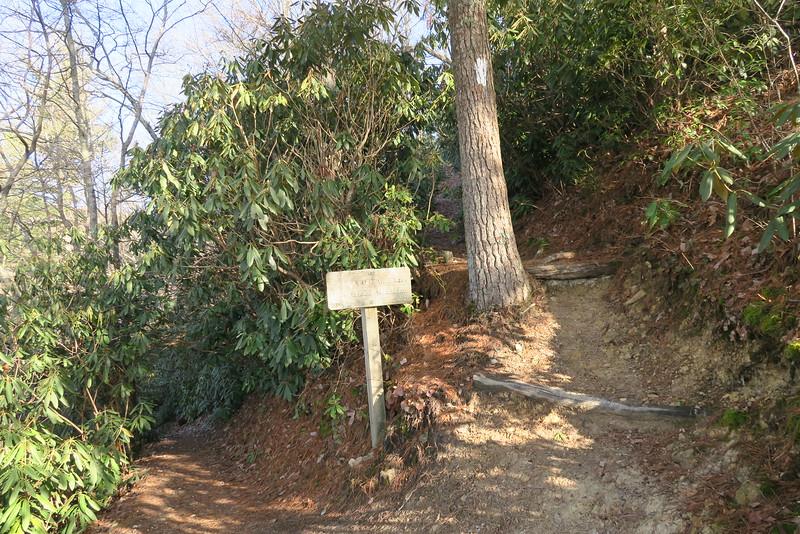 Lover's Leap-Appalachian Trail Junction