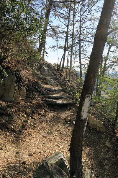 Appalachian Trail - Overlook #2