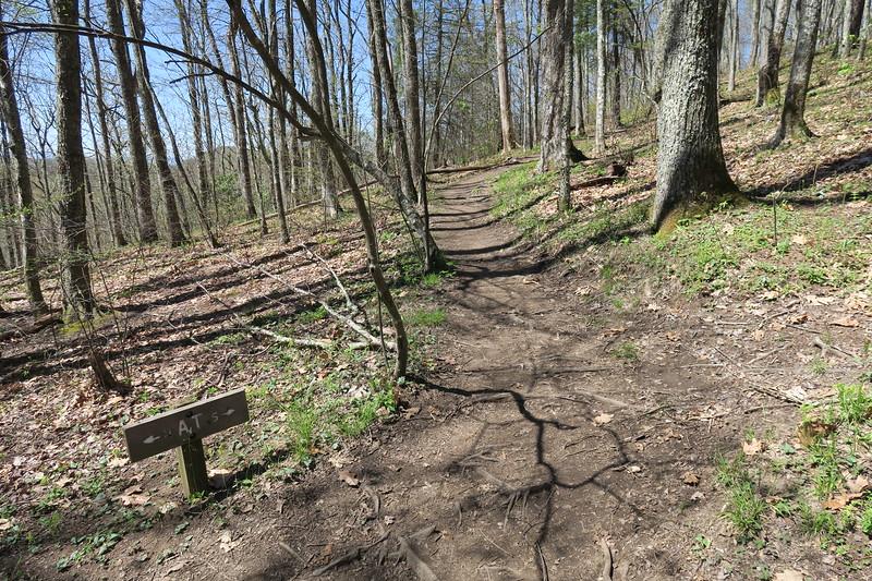 Appalachian Trail -- 4,350'