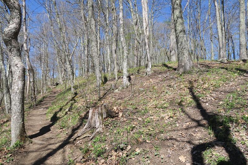 Appalachian Trail -- 4,400'