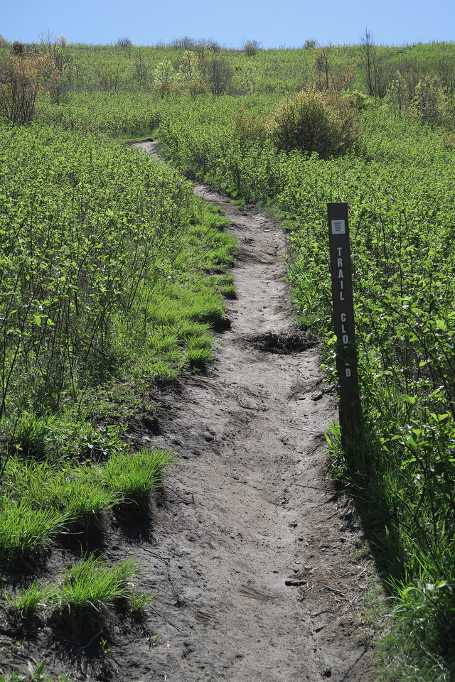 Max Patch Loop Trail -- 4,380'