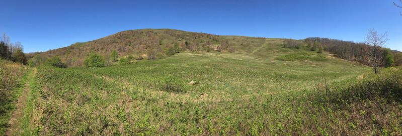 Buckeye Ridge Trail -- 4,250'
