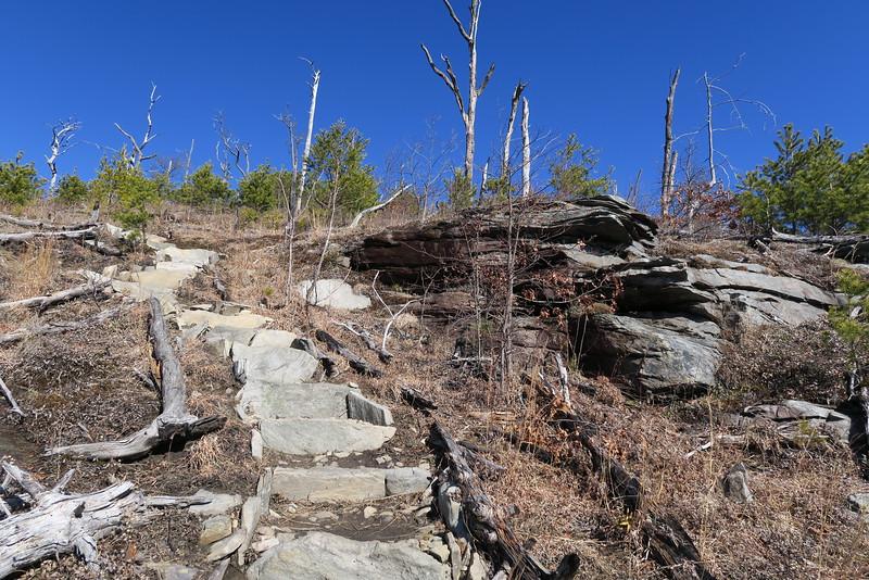 Shortoff Mountain Trail - 2,750'