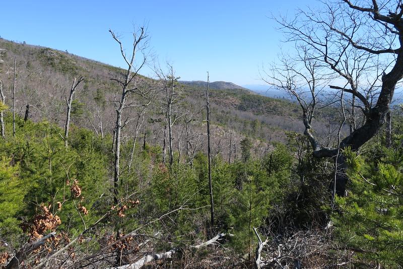 Shortoff Mountain Trail - 2,000'