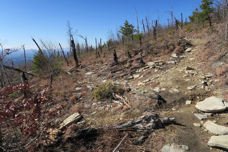 Shortoff Mountain Trail - 2,500'