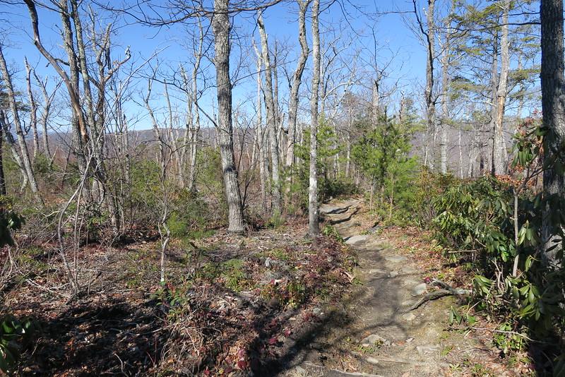 Shortoff Mountain Trail - 2,900'