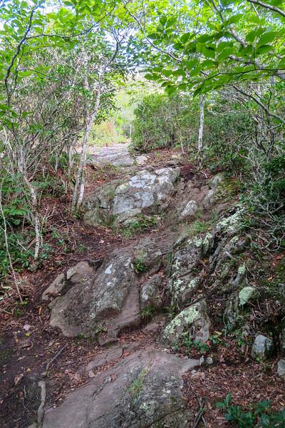 Snowball Trail -- 4,860'