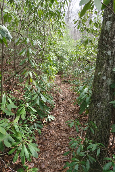 Raider Camp Trail