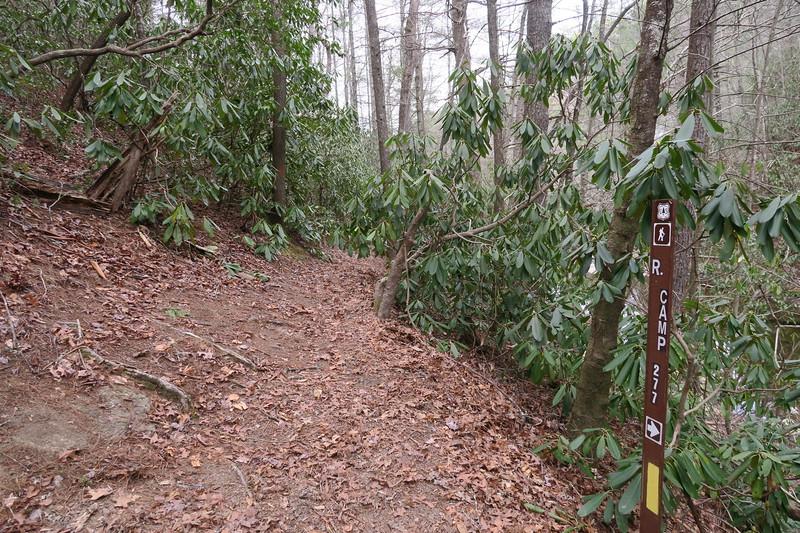 Harper Creek-Raider Camp Trail Junction