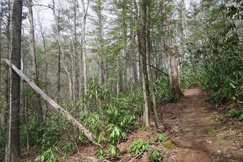Raider Camp Trail