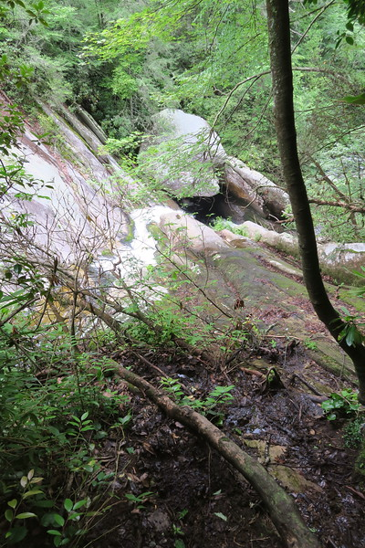 Steele's Creek Falls Spur