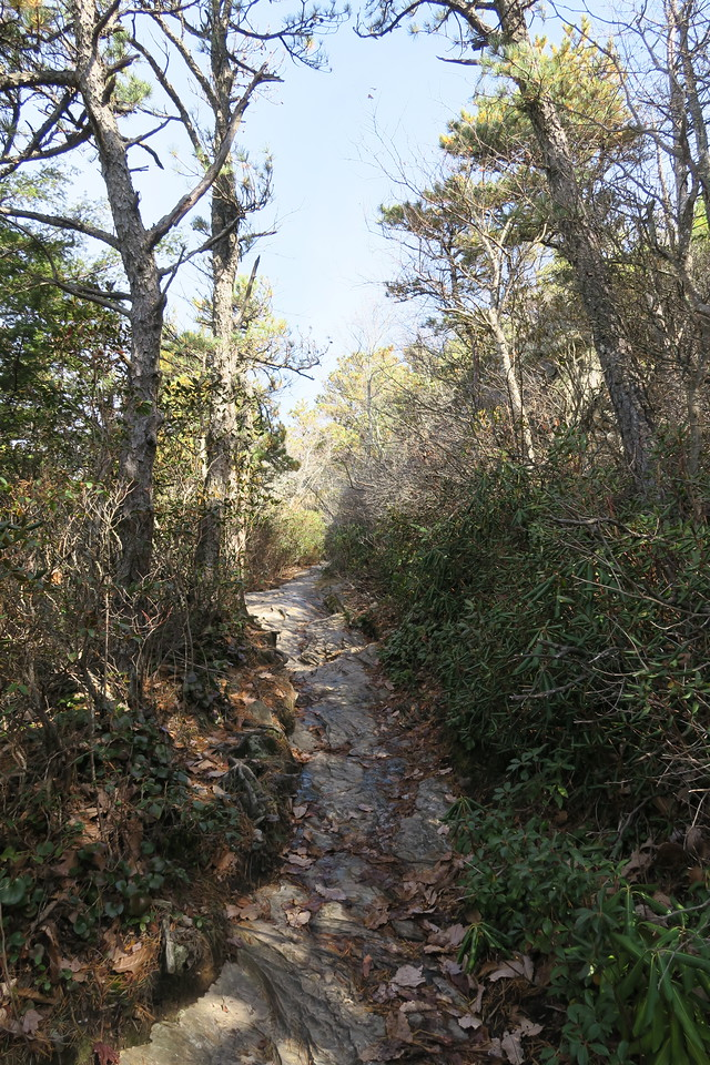 Table Rock Mountain Trail -- 3,750