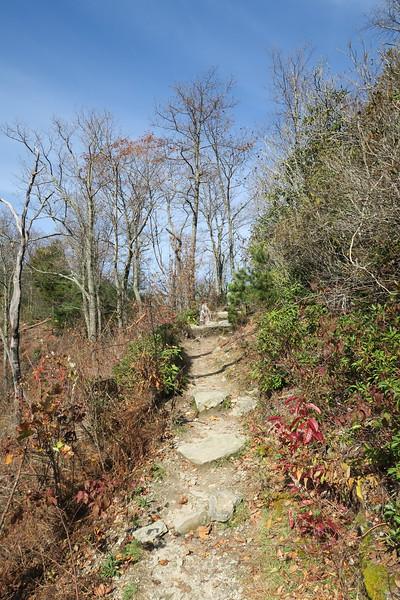 Mountains-to-Sea Trail -- 3,520'