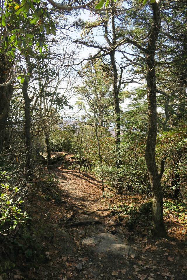 Table Rock Mountain Trail -- 3,800