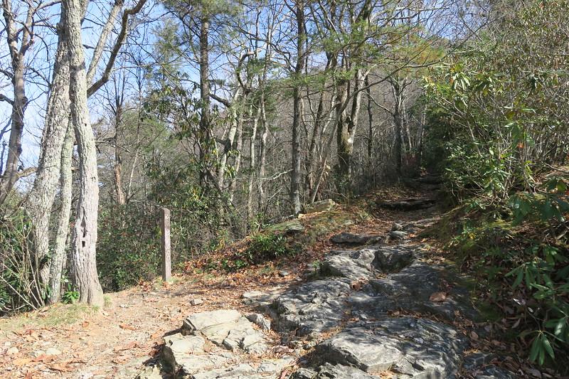 Mountains-to-Sea Trail -- 3,560