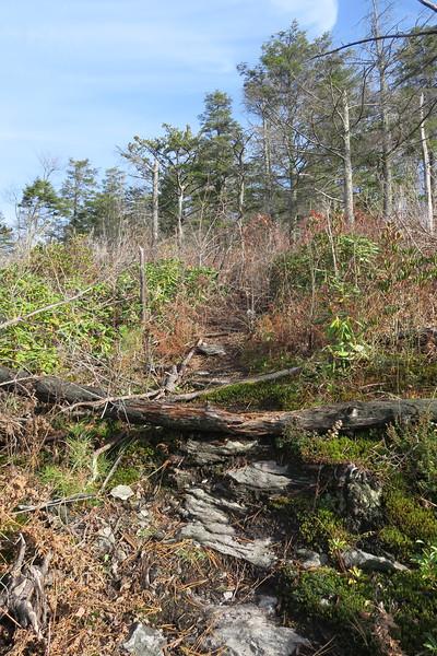 NC Wall Path -- 3,460