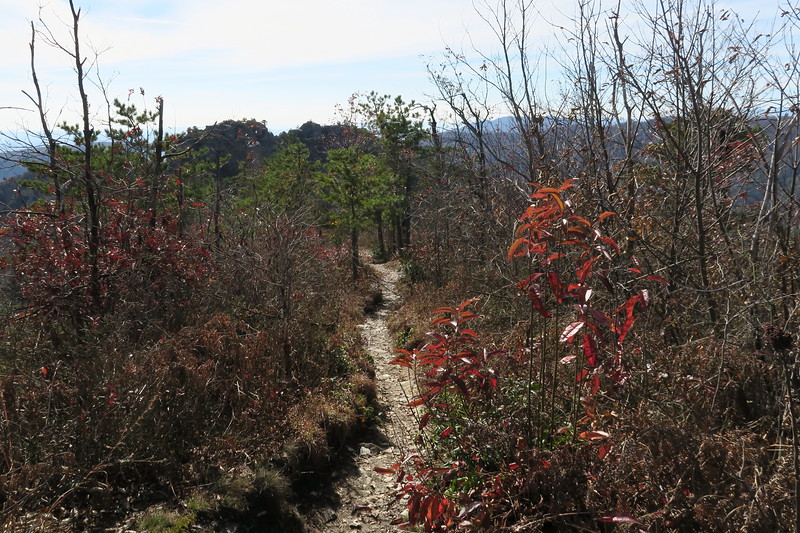 Mountains-to-Sea Trail -- 3,480