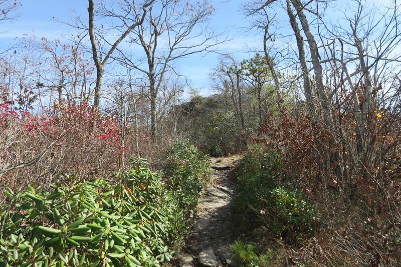 Mountains-to-Sea Trail -- 3,480