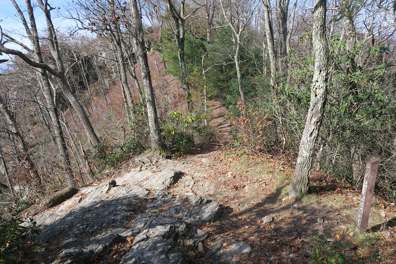 Mountains-to-Sea-Little Tablerock Trail Junction -- 3,560
