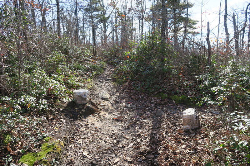 Mountains-to-Sea Trail-NC Wall Path South Junction -- 3,360