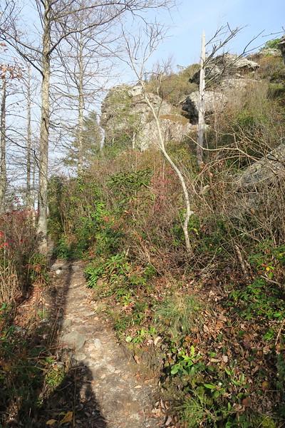 Mountains-to-Sea Trail -- 3,460