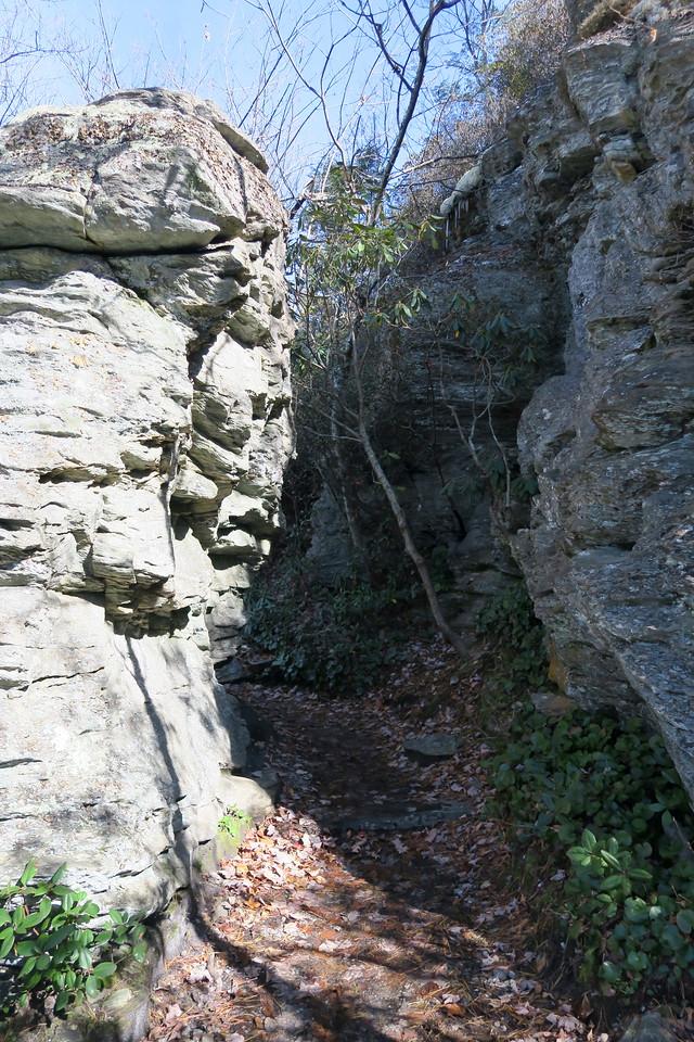 Table Rock Mountain Trail -- 3,720