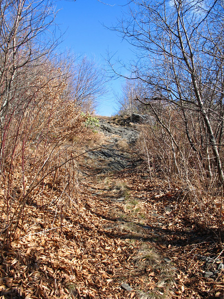 The final short climb to the summit of Three Top.