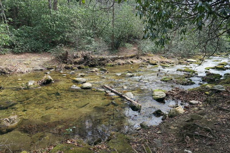 Lost Cove Trail / M.S.T.