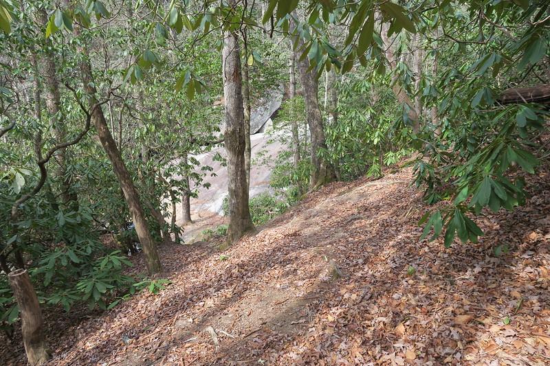 Upper Falls Spur Path