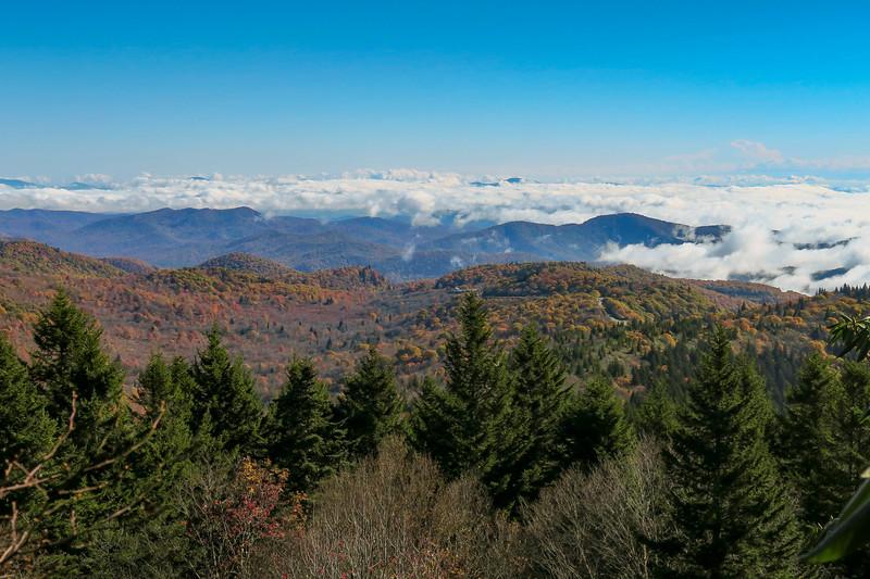 Art Loeb/Mountains-to-Sea Trail -- 5,930'