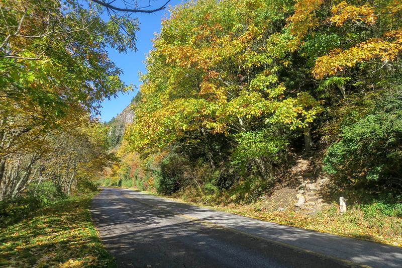 Art Loeb Trail @ Blue Ridge Parkway -- 5,500'