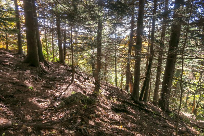 Art Loeb Trail -- 5,600'
