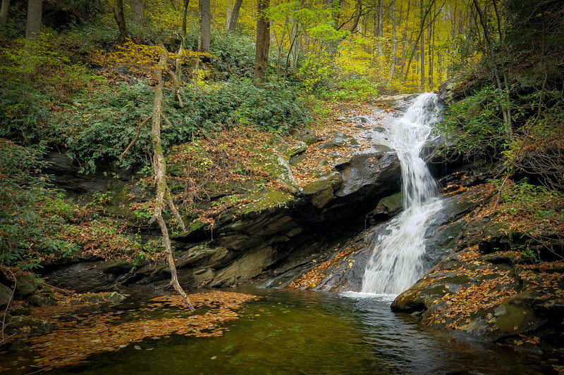 Shuck Ridge Creek Falls -- 3,550'