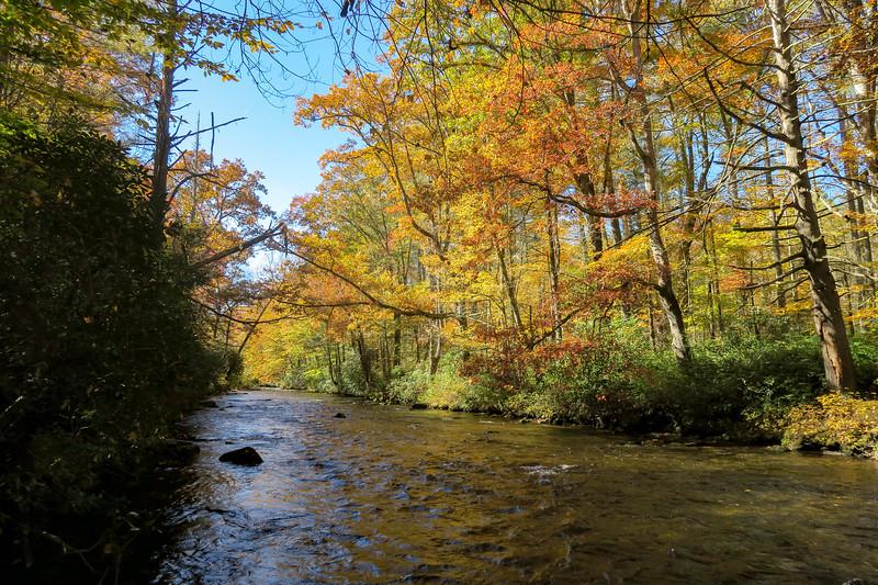 Davidson River -- 2,190'