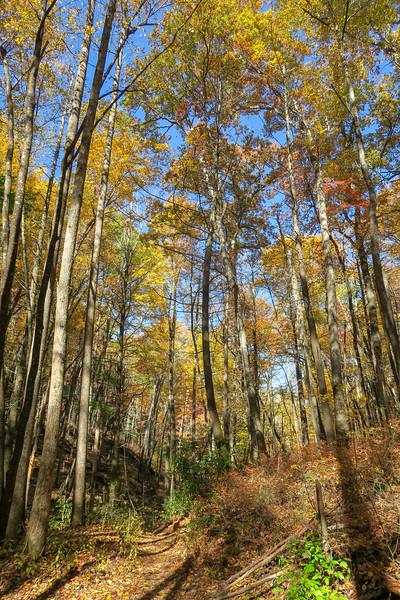 North Slope Loop Trail -- 2,480'