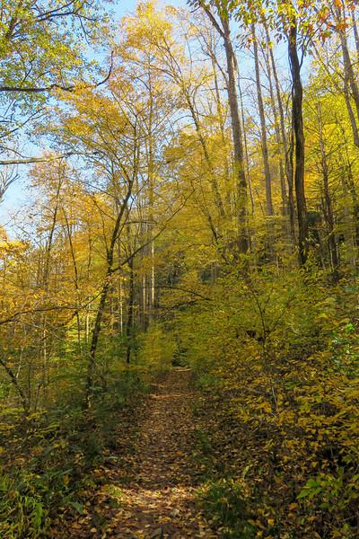North Slope Loop Trail -- 2,220'