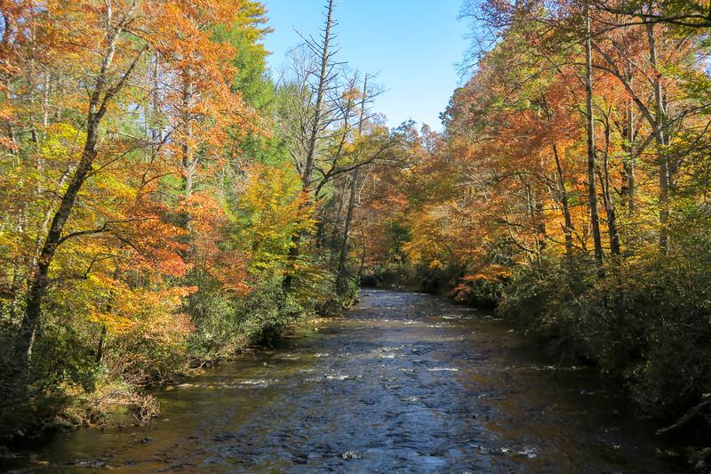 Davidson River -- 2,170'