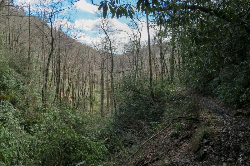 Avery Creek Trail -- 2,760'